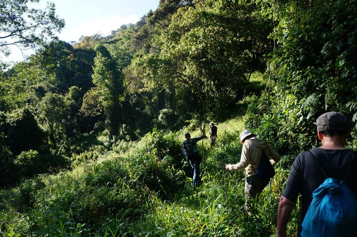 rwanda-trekking