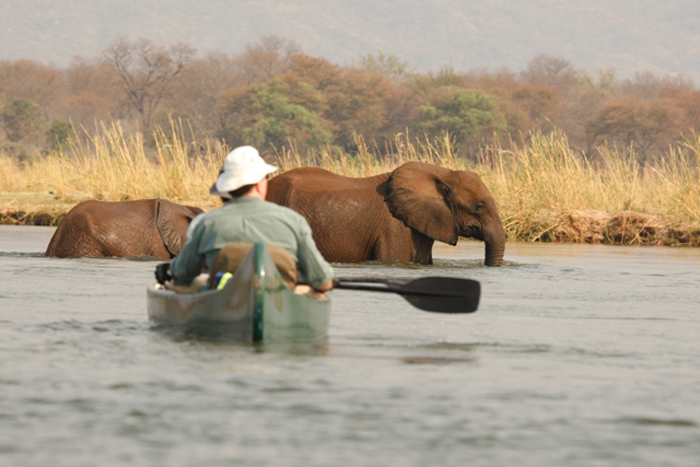Canoeing-Safari