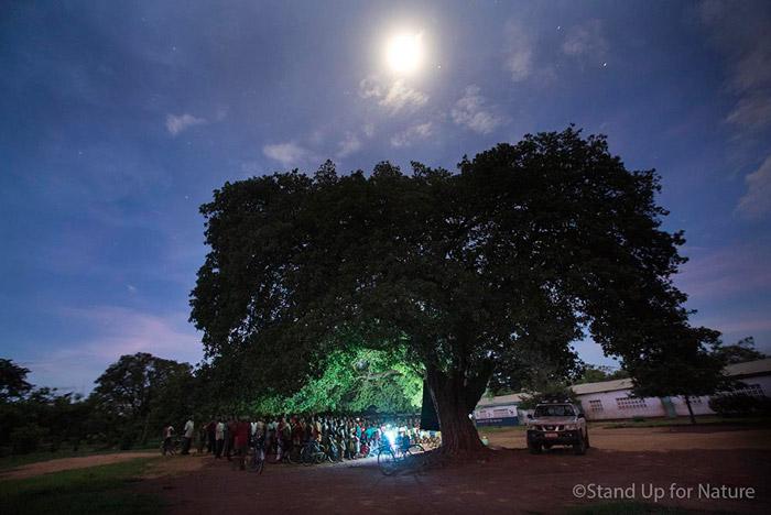 Film-showing-under-tree-malawi