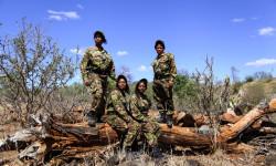 black-mambas-anti-poaching