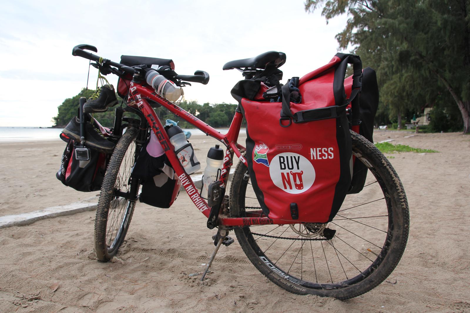 buy-no-rhino-bicycle