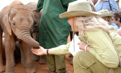 david-sheldrick-elephant-centre
