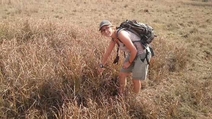 exploring-the-bush