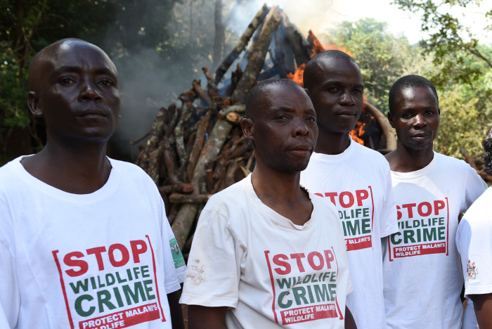 stop-wildlife-crime