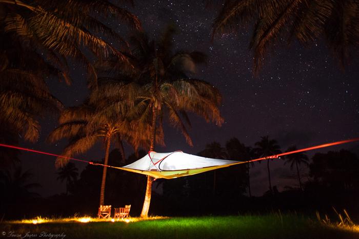 tree-tent-under-nights-sky
