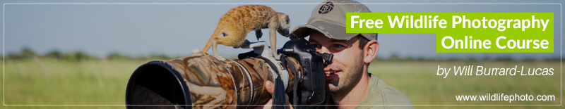 will-burrard-lucas-photography-course