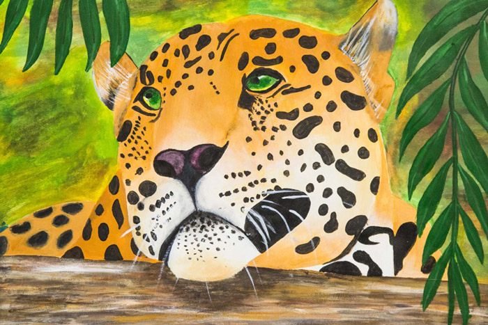 Cape-Leopard-Trust_art