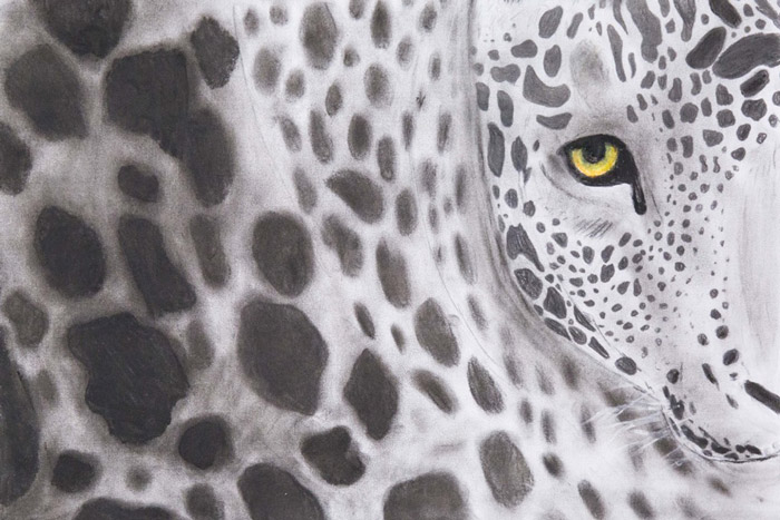Cape-Leopard-Trust_kids-art