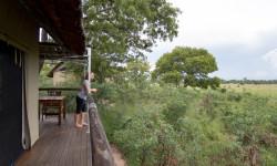 ElephantsEye-view