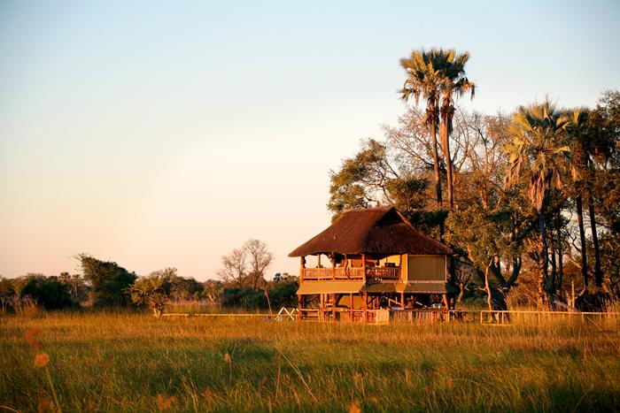 Gunns-Camp-botswana