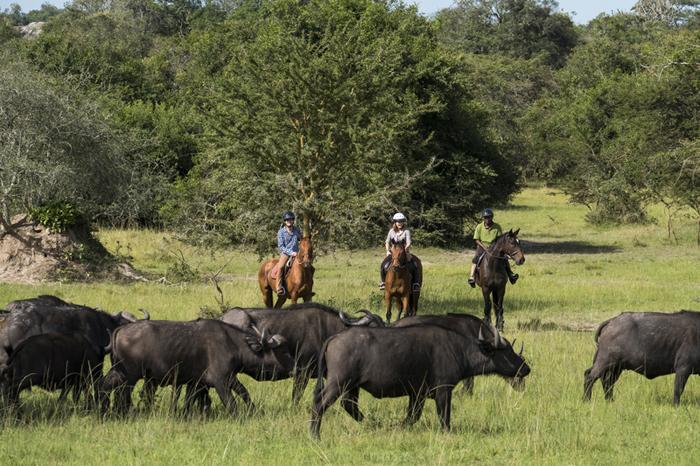 Horseback-safari-Mihingo-Lodge