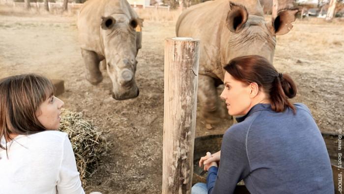 bonne-de-bod-rhinos