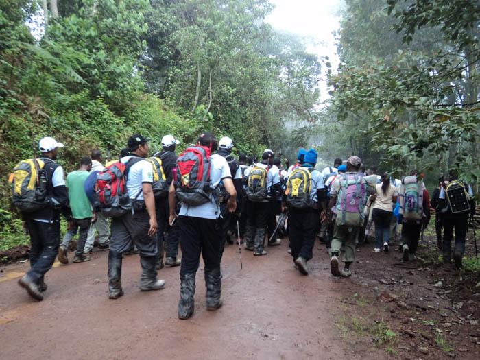 hiking-up-Kilimanjaro