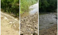 mkazi river collage
