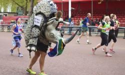 running-rhino-great-wall-china