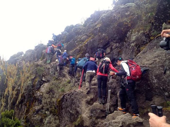 scaling-Kilimanjaro
