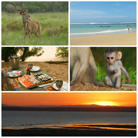 Cape-Vidal-Elephant-Coast