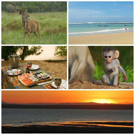 Cape-Vidal-Elephant-Coast