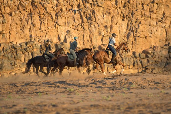 Galloping-on-safari