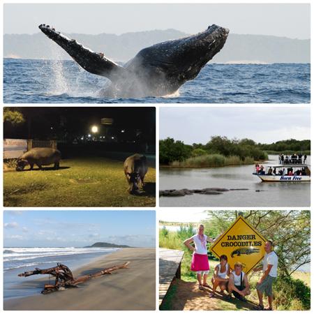 St. Lucia=Elephant-Coast