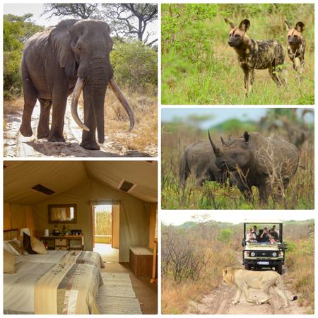 Tembe-Elephant-Coast