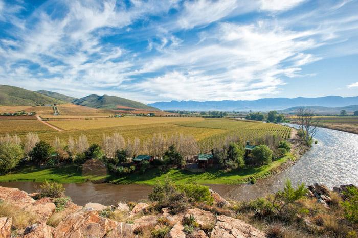 Wacky-Wine-Robertson-Valley