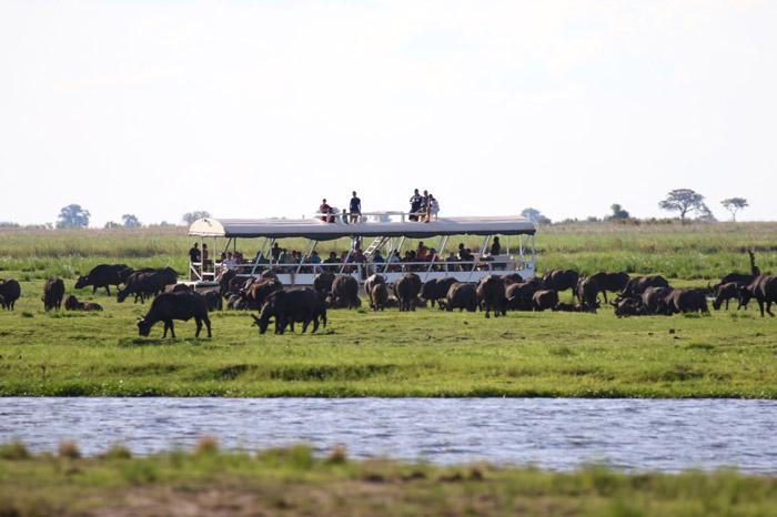 botswana-delta-cruise