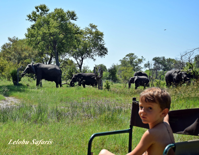 children-on-safari