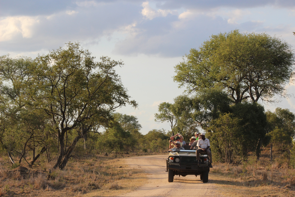 Feel the wind in your hair in an open air safari vehicle ©Kelly Winkler