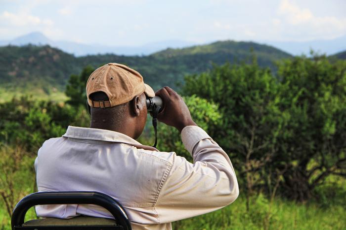rangers-binoculars