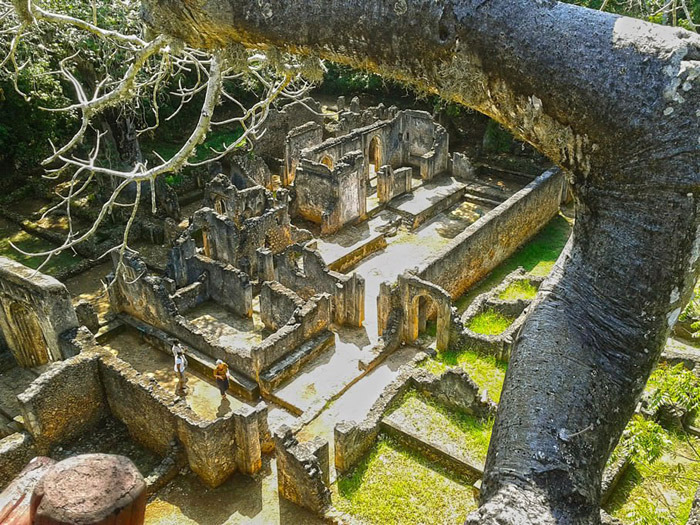 Gede-ruins-view-from-the-tree-house