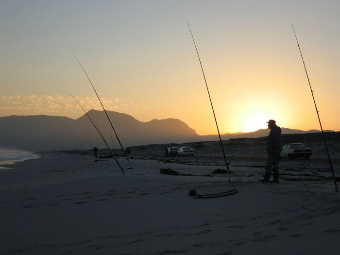 Header-sunset-fishing-rods