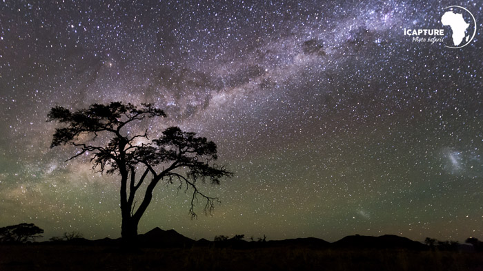 star-gaze-night-photography