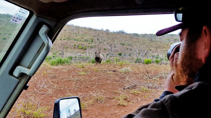 black-rhino-charges-camera