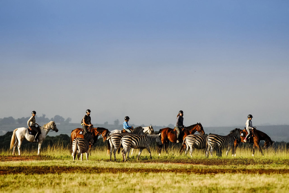 Horseback safaris are a great way to explore the wilds of Swaziland ©Big Game Parks Swaziland