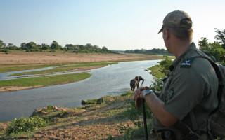 jannie-jurgens-guide-crocodile-river-elephant