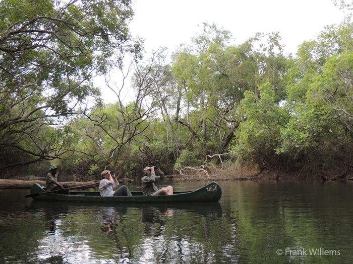 kasanka-national-park
