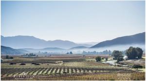 robertson-valley