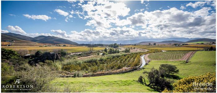 Robertson-Wine-Valley