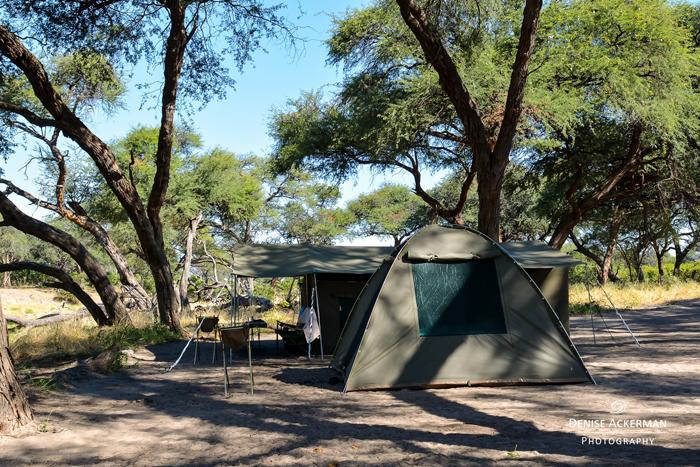 safari-camp