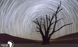 star-trail-night-photography