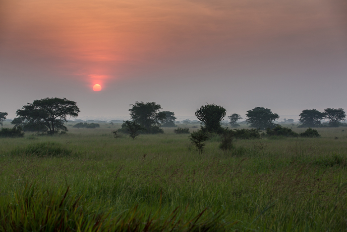safari-tours-across-Africa