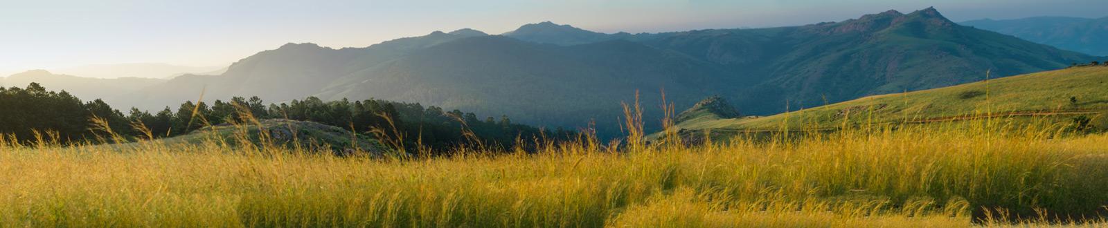 swaziland-panorama