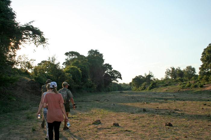 walking-safari-kruger