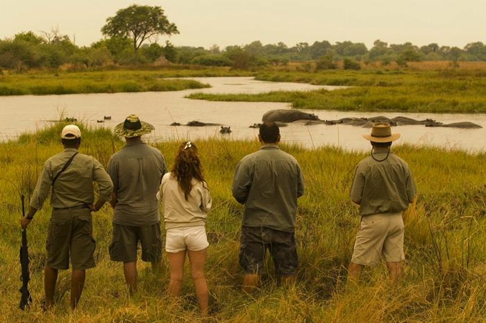 walking-safari-Zimababwe