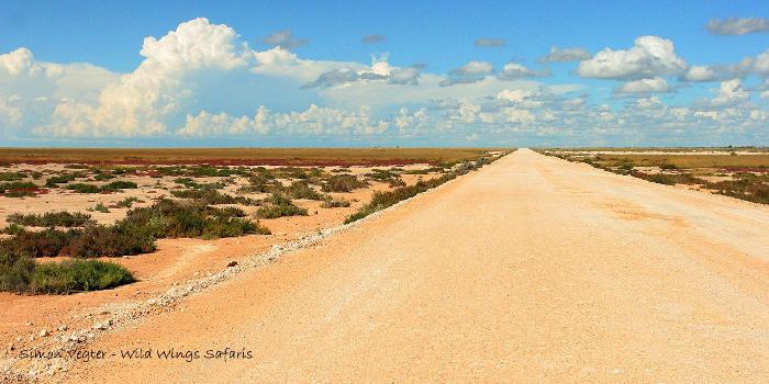 Etosha-roads