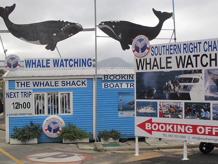 The Whale Shack - ©Carrie Hampton