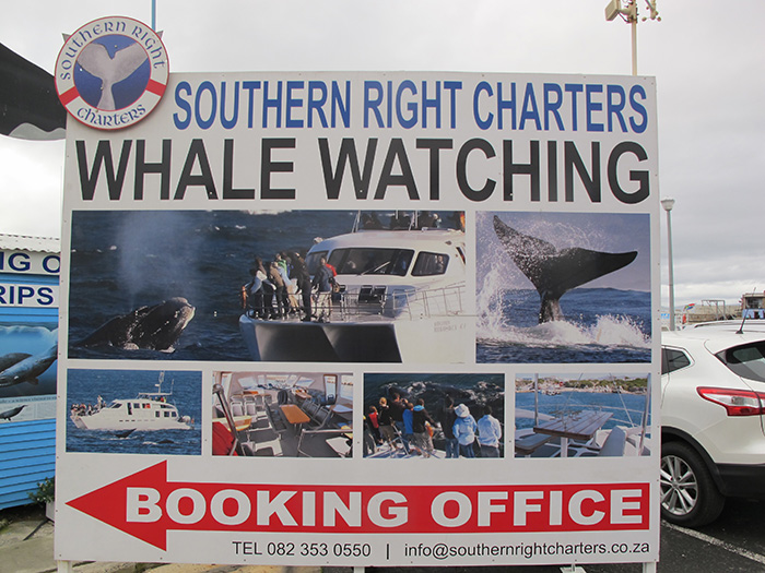 Whale watching board - ©Carrie Hampton