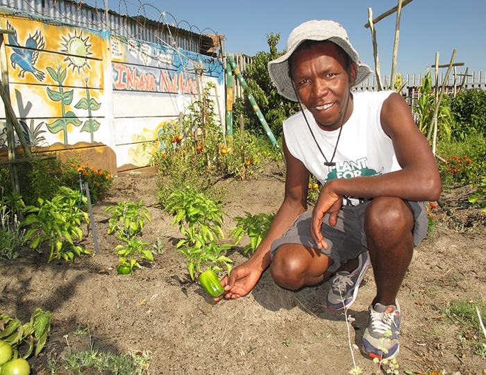 Xolani of Ikhaya Garden shows off his produce on an Uthando tour.