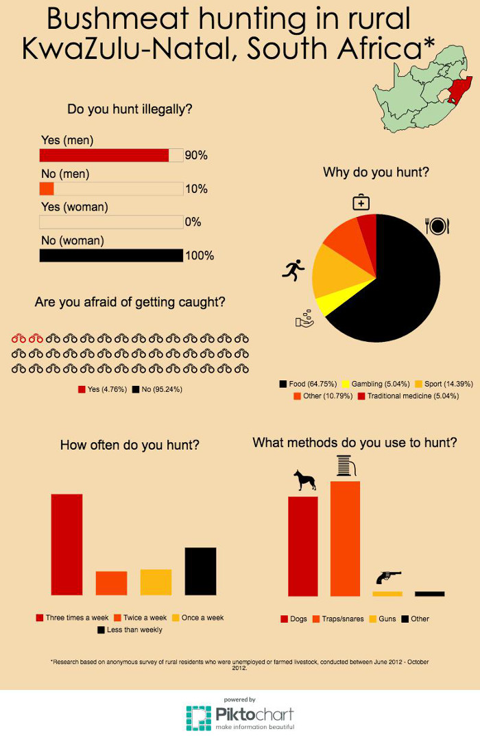 bushmeat-infographic-south-africa-illegal-hunting-food security